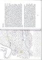 82-83 . side i boken Svedjebruk ISBN 978-82-93036-00-5,.pdf