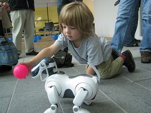 AIBO ERS-7 following pink ball held by child