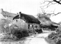 A Book of the West - A COBB COTTAGE, SHEEPWASH.png
