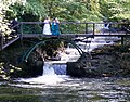 A Bridal Party by The Falls - geograph.org.uk - 1513604.jpg