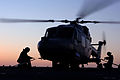 A Lynx helicopter onboard HMS Albion MOD 45147668.jpg