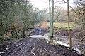 A Muddy Crossing, Eridge Old Park - geograph.org.uk - 339237.jpg