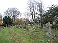 A November morning in St Mary's Churchyard - geograph.org.uk - 1045860.jpg