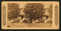 A Pioneer's Sunday in Southern California, from Robert N. Dennis collection of stereoscopic views.png