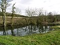 A Pond in Drewton Dale - geograph.org.uk - 722766.jpg