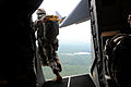 A U.S. Army paratrooper with the 1st Brigade Combat Team, 82nd Airborne Division jumps out of an Air Force C-17 Globemaster III aircraft June 27, 2013, during Joint Operational Access Exercise (JOAX) 13-03 130627-F-GO452-616.jpg