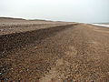 A deeply shelved shingle beach - geograph.org.uk - 1181065.jpg