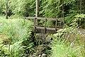 A footbridge in parkland, Wallington - geograph.org.uk - 1390433.jpg