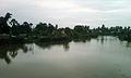 A freshwater pond at Dwarapudi.jpg