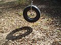 A good old tire swing - see the traveling knome - panoramio.jpg