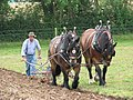 A pair of horses ploughing - geograph.org.uk - 517658.jpg