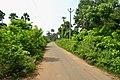 A rural road near Pandrangi village.jpg