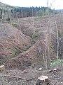 A spur, Shorthope Burn - geograph.org.uk - 1024427.jpg