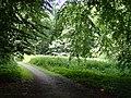 Aarslev Møllepark (juli).jpg