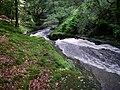 Afon Giedd gorge - geograph.org.uk - 505766.jpg