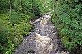 Afon Llugwy, Capel Curig - geograph.org.uk - 1476408.jpg