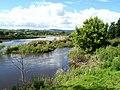 Afon Tywi - geograph.org.uk - 508208.jpg