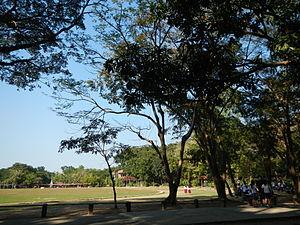 Don Mariano Marcos Memorial State University - DMMMSU-South La Union Campus (Agoo, La Union).