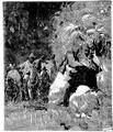 Aimard - Les Chasseurs d'abeilles, 1893, illust page 085.png