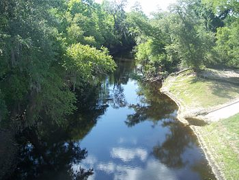 Alachua-Union FL Santa Fe River west01