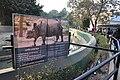 Alipore Zoological Garden - Kolkata 2011-01-09 0110.JPG