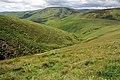 Allery Sike - geograph.org.uk - 871829.jpg