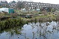 Allotments adjacent to the River Itchen - geograph.org.uk - 1778646.jpg