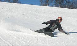 Alpine boarder.JPG