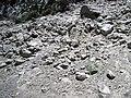 Alpine glacial till (Pleistocene; Lee Vining Canyon, Yosemite National Park, California, USA) 1.jpg