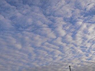 Mackerel sky - Image: Altocumulusmackarel