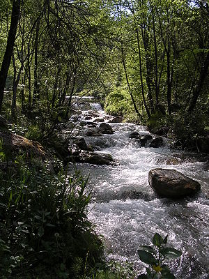 Ambro creek, Monti Sibillini National Park, ne...