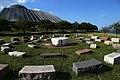 America's Courtyard - Adler Planetarium Plaza - panoramio.jpg