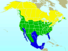 American Robin-rangemap.png