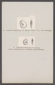 Ammonites dentatus - - Print - Iconographia Zoologica - Special Collections University of Amsterdam - UBAINV0274 091 01 0070.tif