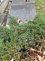 Andrzej Cehelik grób.JPG
