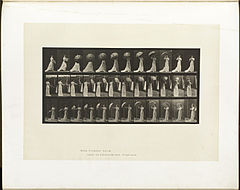 Animal locomotion. Plate 461 (Boston Public Library).jpg