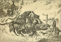 Animals in action; studies and stories of beasts, birds and reptiles; their habits, their homes and their peculiarities (1901) (14775331783).jpg