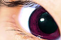 Anime Eye? (8336228624).jpg