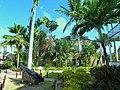 Antigua - Nelson's Dockyard - Parks - panoramio.jpg