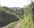 Approaching Pentrellwyn Cottage - geograph.org.uk - 936545.jpg