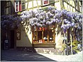 April Patina Riquewihr Ville Reichenweier - Master Alsace magic Elsaß Photography 2014 - panoramio (2).jpg