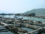 Aquaculture in Lo-nguong.jpg