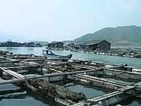 Aquaculture en Chine