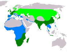 Light green: summer Dark green: all year Blue: winter