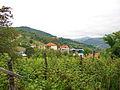 Arilje-radosevo-7876.jpg
