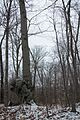 Army Mountain Warfare School winter exercises 160324-Z-QK503-231.jpg