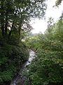 Auenwald-bei-Mühdorf-DSCN0315-WDPA-555522076-Muehldorf-BR-48.2334-LG-12.5290.jpg