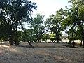 August 2012 - panoramio (57).jpg