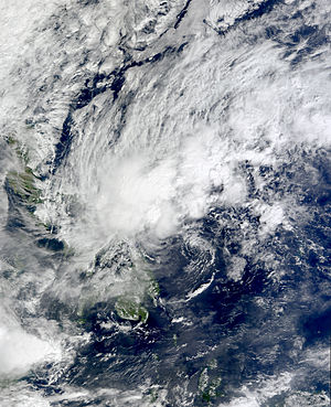 2009 Pacific typhoon season - Image: Auring 04 jan 2009 0210Z