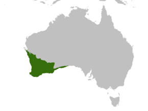 Description de l'image Australia-ecoregion SW.png.